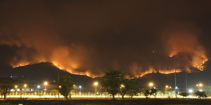 bad faith lawsuits for wildfires